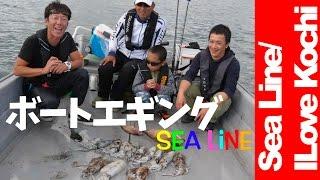 【ボートエギングで思わぬ大物が!】アオリイカの当り年ですか??【シーライン釣果ノート21】【Boat Squid fishing】