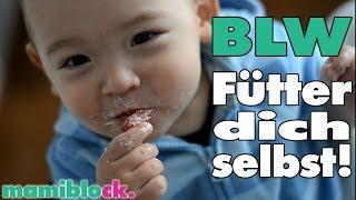 Was ist Baby Led Weaning? | 3 super einfache Rezepte | BLW | mamiblock kiDchen