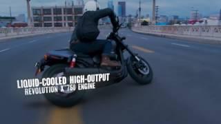 Die neue Harley Davidson Street Rod 2017