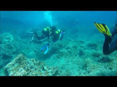 Menorca 2017 Dive Video