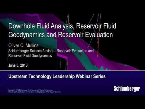 Downhole Fluid Analysis, Reservoir Fluid Geodynamics, and Reservoir Evaluation