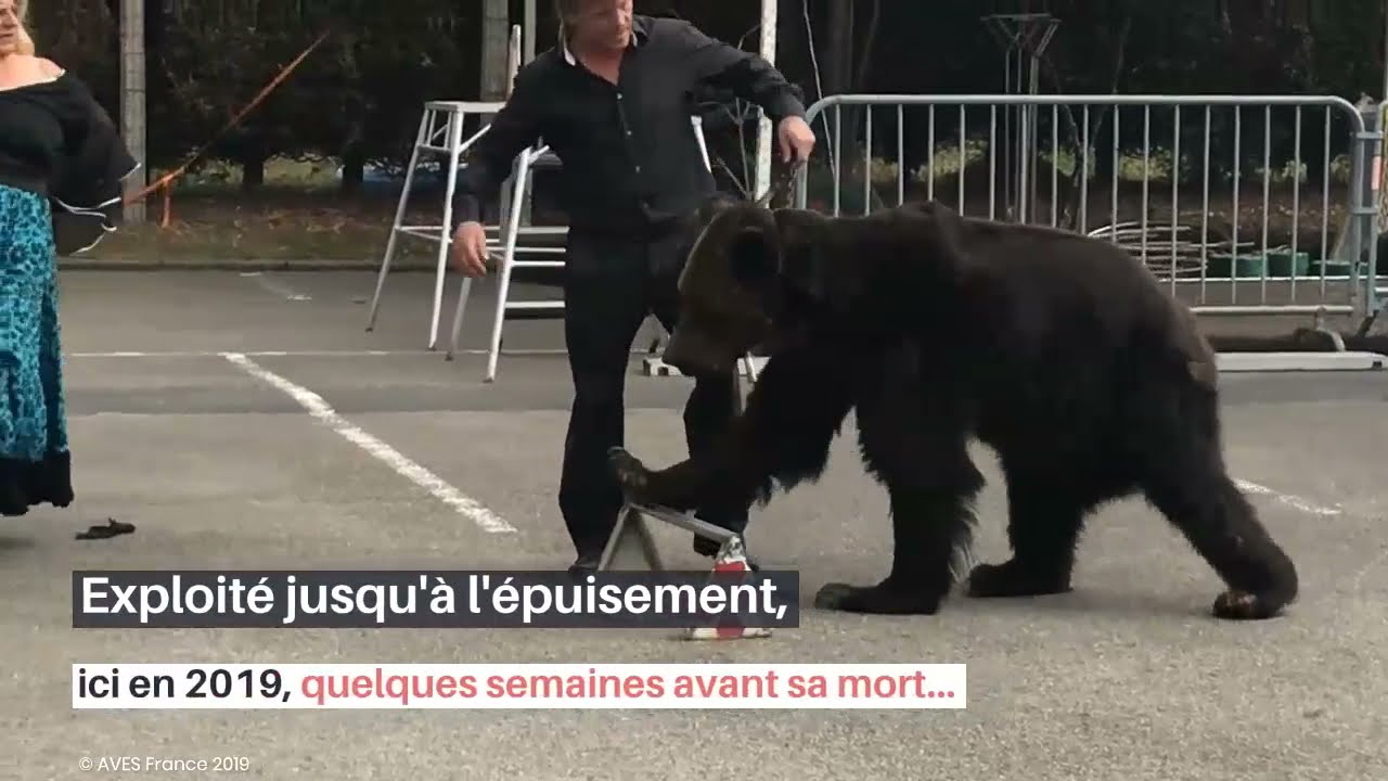 Rassemblement à Blois pour le procès des Poliakov (ours Micha)