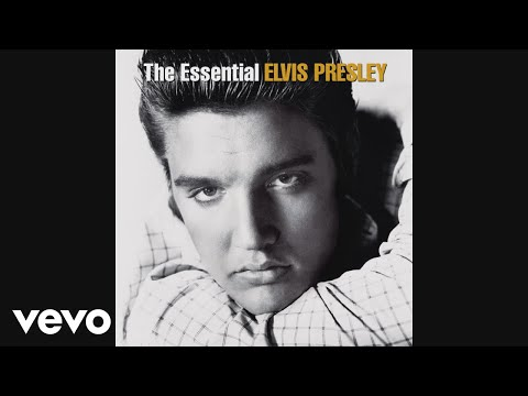 Elvis Presley - A Little Less Conversation (Audio)