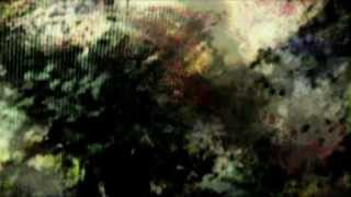 CARNATIONS by Helena Espvall & Dark Foterek