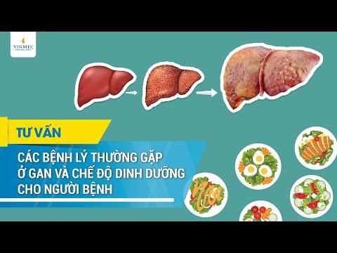 Các bệnh lý thường gặp ở gan và chế độ dinh dưỡng cho người bệnh
