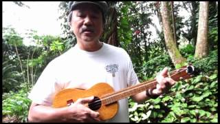 Save Your Heart for Me (Gary Lewis & the Playboys ukulele cover)