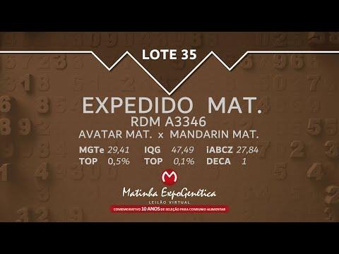 LOTE 35 MATINHA EXPOGENÉTICA 2021