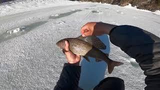 Рыбалка ДО СВИДАНИЯ Отличный улов