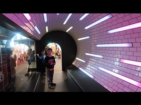 Train Adventure to Melbourne Museum