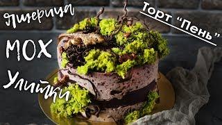 Оформление торта  с улитками и ящерицей / мох на торт / шоколадные коряги и ветви