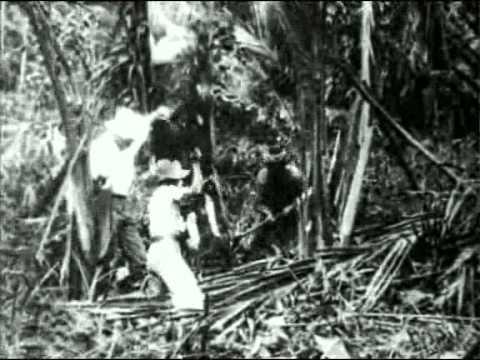 Trip Through North Borneo 1907