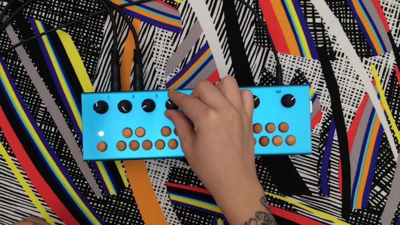 Critter Guitari Chis Wiring Harness Free Download Punchy