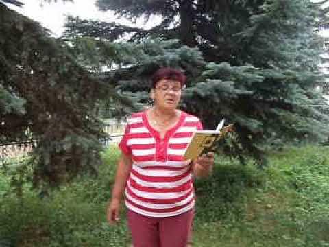 Изображение предпросмотра прочтения – ТатьянаПолякова читает произведение «Лес» А.А.Фета
