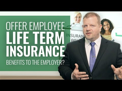 offering-employee-term-life-insurance-(tax-benefits-to-the-employer?)