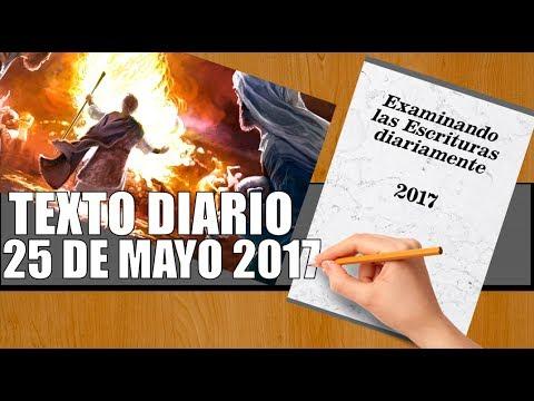 TEXTO DIARIO ANIMADO/ 25 de mayo 2017