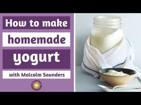 How To Make Probiotic Rich Homemade Yogurt