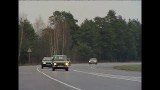 Для предотвращения ДТП с участием диких животных на трассе М-8 установят ограждение