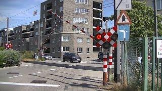 Spoorwegovergang Turnhout (B) // Railroad crossing // Passage à niveau