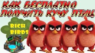 «RICHBIRDS» КАК БЕСПЛАТНО ПОЛУЧИТЬ МНОГО ПТИЦ?