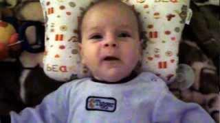 Лабрадор 2,5 месяца первый день в квартире