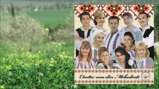 COLAJ ALBUM COMPILATIE  CANTEC NOU DIN MEHEDINTI
