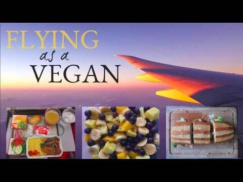 VEGAN FOOD TIPS FOR AIRPLANE // How To Survive A Flight