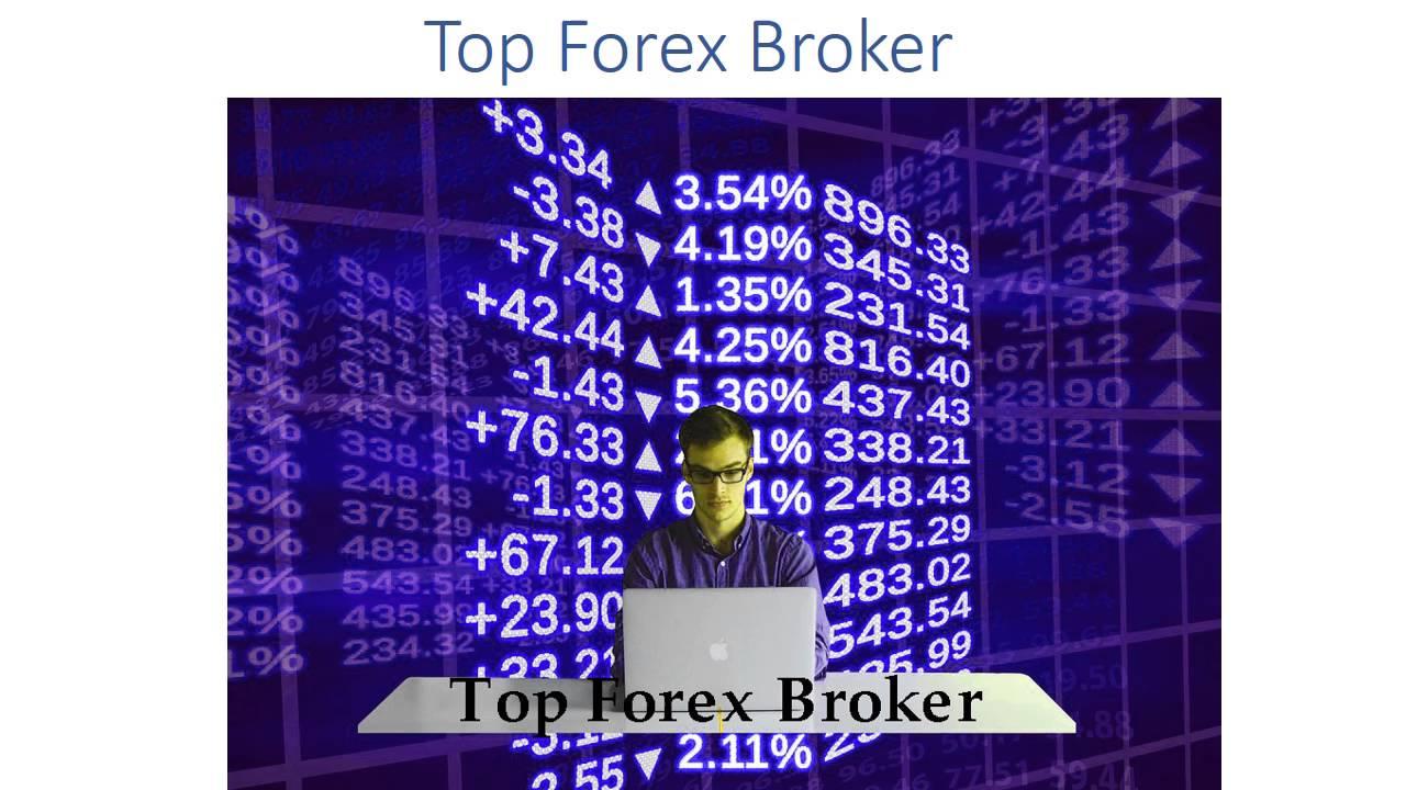 top 8 forex brokers
