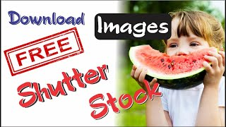 How To Download Stock Images From Shutterstock For Free