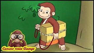 Curioso come George 🐵Come cane e gatto 🐵Cartoni Animati per Bambini 🐵George la Scimmia