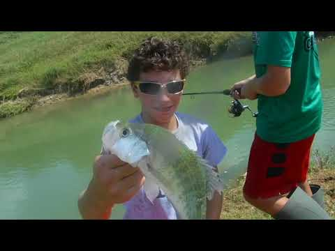 Tons Of BASS, CATFISH , CRAPPIE And MORE In Small Houston Bayou.