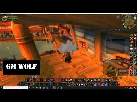 Angelwettbewerb Schlingendorntal 2020  | Angelmeister | GM Wolf | World Of Warcraft Classic | HD