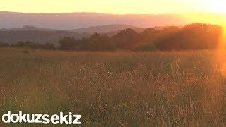 Ezginin Günlüğü - Çalsın Sazlar (Lyric Video)