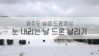 눈 내리던 날의 제주도 설경(매빅 에어2) / jeju…