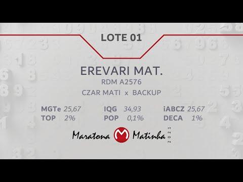 LOTE 01 Maratona Matinha