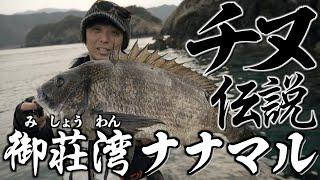 【黒鯛フカセ釣り】御荘湾のナナマル伝説