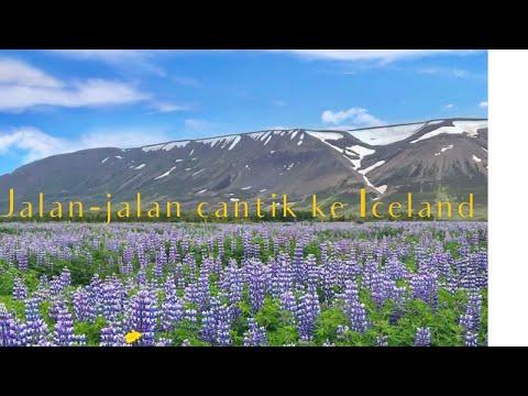 Jadi Tour Guide orang Indonesia di Islandia