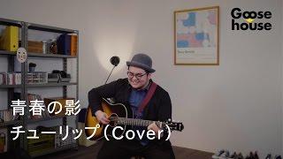 青春の影/チューリップ(Cover)