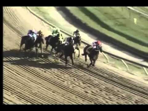 Pimlico 04 27 13 Race 10 Federico Tesio Stakes Youtube