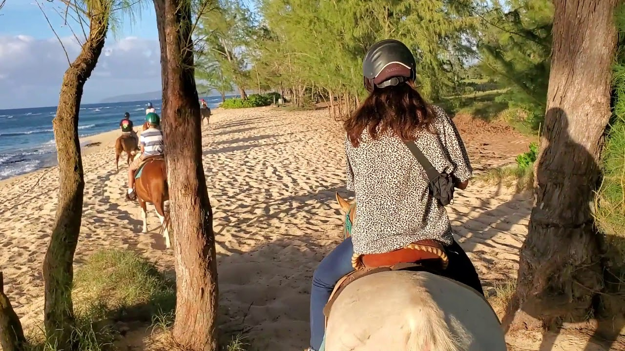 Sunset Ride | Hawaii Polo Trail Rides