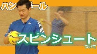 元ハンドボール実業団選手、現パーソナルトレーナーをやっている田野平...