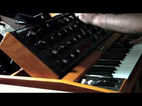 Moog Voyager Old School + Delay = Fat & Bouncy