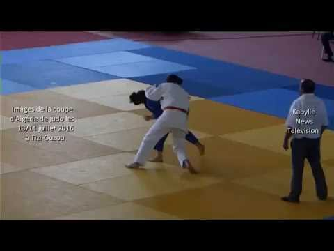 Un chat et des images de la Coupe d'Algérie de judo les 13 et 14 juillet à Tizi-ouzou