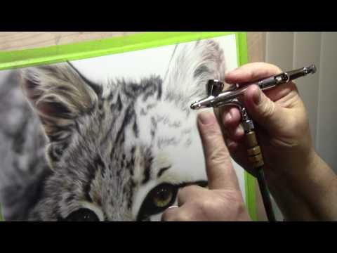 Bobcat Fur Demo