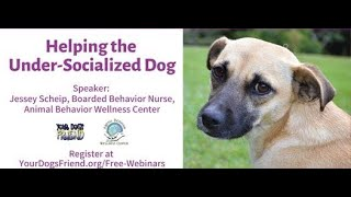Helping the UnderSocialized Dog , Webinar Hosted by Your Dog's Friend       7 17 21