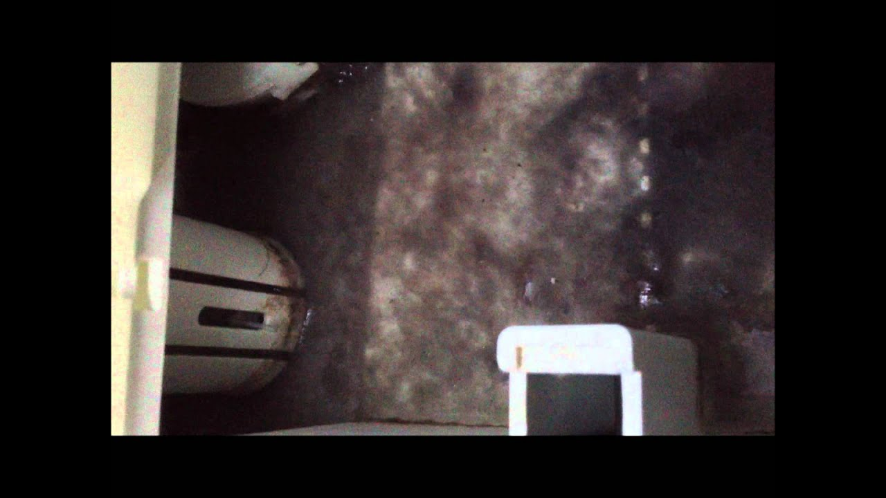 How to fix bosch condensing dryer f03 youtube sciox Image collections
