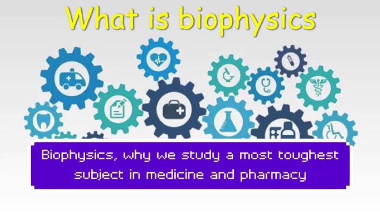 What is Biophysics   importance of physics in medicine and pharmacy   medical physicist