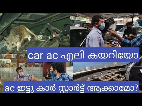 കാർ Ac എലി കയറിയോ?|ഏതു വണ്ടിക്കും Ac Fit ചെയ്യാം|car Ac Maintenance Tips|