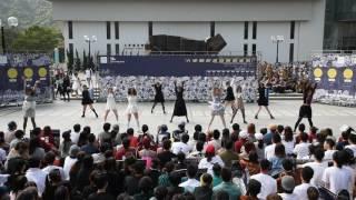 joint u mass dance 2016 cu station edu current team