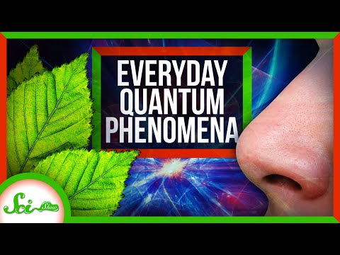 How Quantum Mechanics Affects Your Life