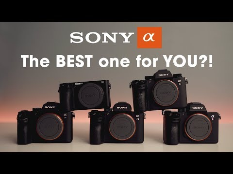 What is the BEST Sony Alpha camera for YOU?!